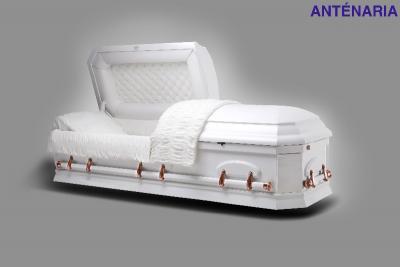 Modèles de cercueils Grasse